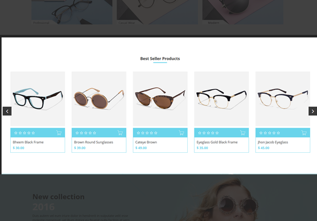 Product Slider Snippet